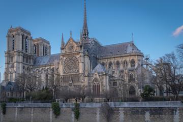 Paris, France - 03 10 2019: View of Notre-Dame Of Paris from the quais of Seine
