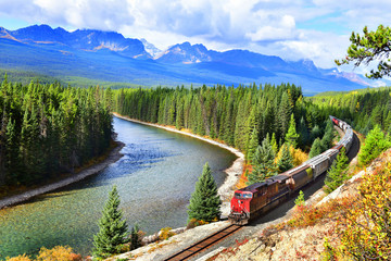 Train passing famous Morant's curve at Bow Valley in autumn ,Banff National Park, Canadian Rockies,Canada