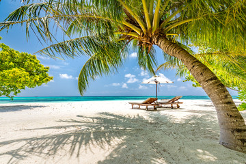 Beautiful beach. Chairs on the sandy beach near the sea. Summer holiday and vacation concept. Tropical beach landscape. Exotic vacation and summer holiday concept design