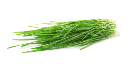 Green organic wheat grass on white background