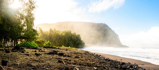 The Punaluu black sand beach, Big Island, Hawaii