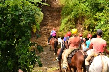 乗馬体験ツアー