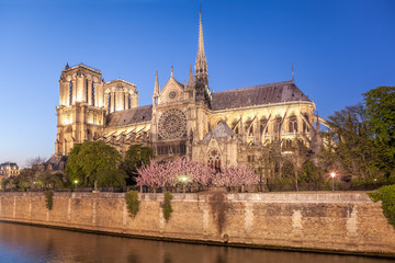Paris, Notre Dame cathedral in the evening during spring time, France