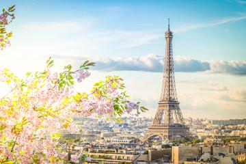 Wieża Eiffla i panoramę Paryża