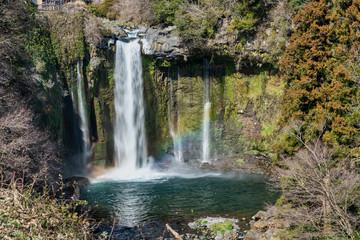 富士宮 音止の滝