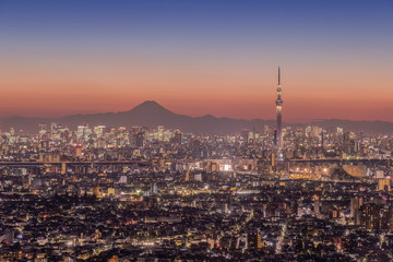 Tokyo city night view with Mt.Fuji