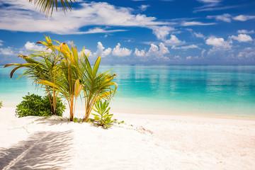 Beautiful sunny ocean beach on Maldives