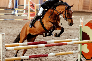 equestrian on horse jumping obstacle in competition for equestrian sport