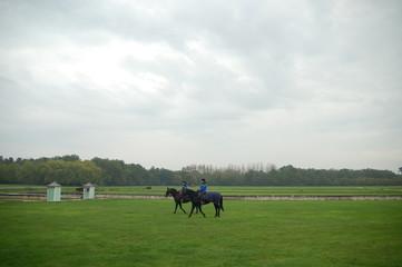 ロワールと馬