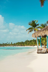 tropical nature, the Caribbean Sea, palm trees, the island, the Dominican Republic, boats.