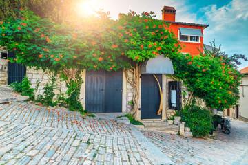 Medieval Croatian old street and flowery entrance in Rovinj, Europe