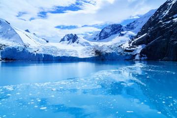 氷河の氷 サウスジョージア島