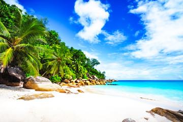 paradise beach on the seychelles 11