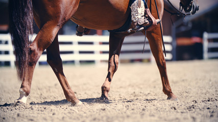 Horse ridden by cowboy with boots and spurs
