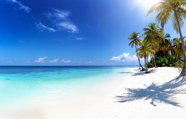 Panorama eines tropischen Strandes auf den Malediven mit Palmen, türkisem Ozean und Sonnenschein