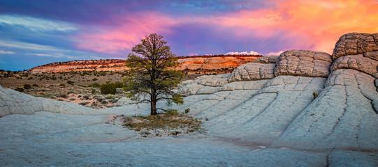 Colorful scene in the desert southwest, Utah, USA.