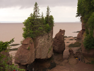 Hopewell Rocks at Low Tide