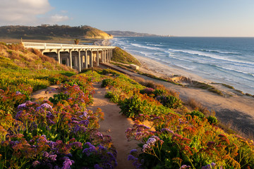 Torrey Pines State Beach, San Diego
