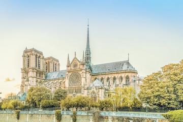 The Cathedral of Notre Dame de Paris