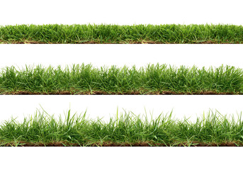 A collection of real grass borders, short, medium and long grass edges isolated on a white background.