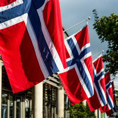 A Line Of Norwegian National Flags