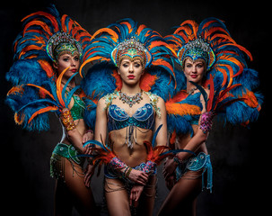 Studio portrait of a group professional dancers female in colorful sumptuous carnival feather suits. Isolated on a dark background.