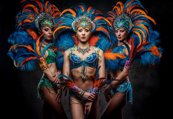 Portrait of a group sexy dancers female in colorful sumptuous carnival feather suits. Isolated on a dark background.