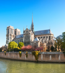 Undamaged Eastern facade of Notre Dame de Paris in Springtime before the fire, panoramic image
