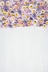 Spring floral background with daisies, lilac flowers, forget-me-nots and pansies
