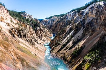 Yellowstone river from lower falls