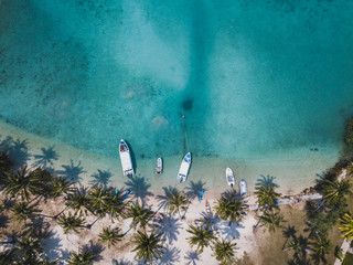 paradise tropical beach with turquoise sea water and palm trees, aerial drone top view beautiful landscape