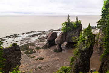 Hopewell Rocks on Bay of Fundy in New Brunswick area of Canada at Low Tide