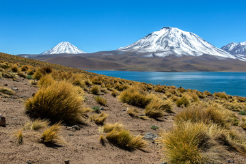 Lagoon Miscanti, lake high in the Andes Mountains in the Atacama Desert, northern Chile, South America