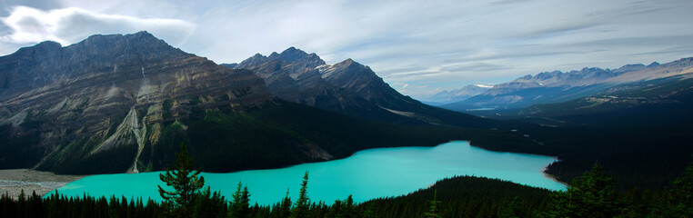 Panoramatic view of Peyto Lake in the Rocky Mountains