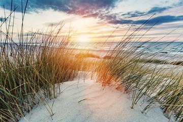 Trawiaste wydmy i Morze Bałtyckie o zachodzie słońca