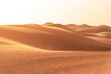 Piękne wydmy na Saharze.