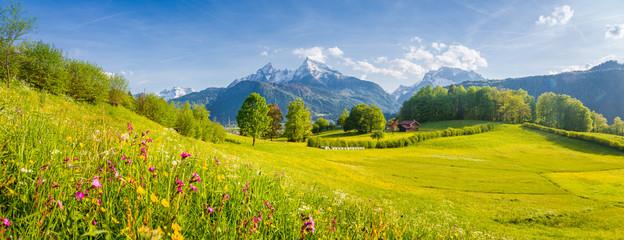 Idylliczna górska sceneria w Alpach z kwitnącymi łąkami na wiosnę