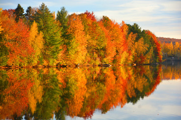 Fall landscape Quebec province Canada