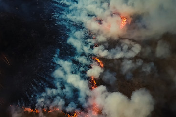 Fires in Russian forest, Transbaikal forest in fire, burning of