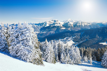 Snow-covered trees in Alps mountains with Mont Blanc ridge in the background, France. Beautiful winter landscape