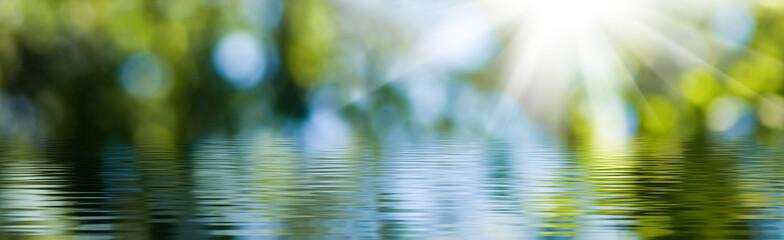 zamazany obraz naturalnego tła z wody i roślin