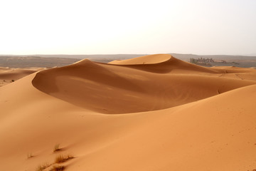Sand dunes in the Sahara desert in Morocco.