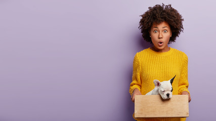Woman fond of pets. Shocked female volunteer found homeless animal at street, holds wooden box with little pedigree puppy, dressed in yellow knitted sweater, stands against purple wall, empty space