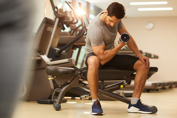 Full length portrait of muscular man lifting dumbbells sitting on bench during strength workout in gym, copy space
