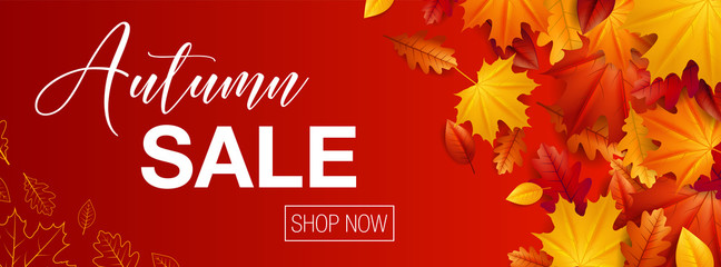 Autumn sale background banner with autumn fall maple leaves