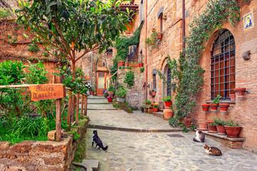 Piękna aleja w Toskanii, Stare Miasto, Włochy