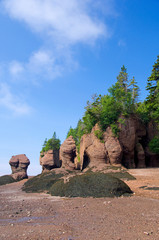 Canada, New Brunswick, Hopewell Cape, Bay of Fundy. Hopewell Rocks at low tide (aka Flowerpot Rocks).