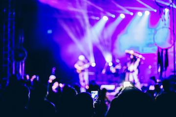 Crowd at rock concert