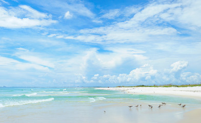 Panorama of the Beautiful White Sand Beach of the Florida Gulf Coast