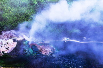 A small geyser erupts sending steam and water into the air at the Waimangu Volcanic Valley in Rotorua, New Zealand.